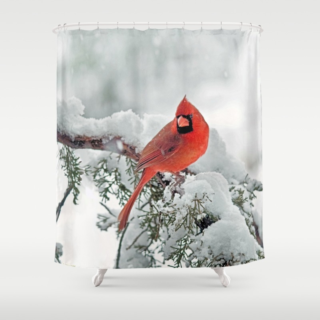 Red Cardinal Shower Curtain Shower Curtain Design Throughout Dimensions  1080 X 1080