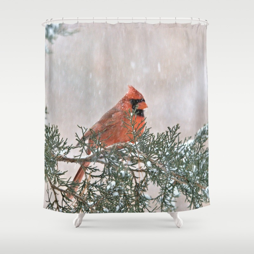 Red Cardinal Shower Curtain Shower Curtain Design With Dimensions 1080 X  1080